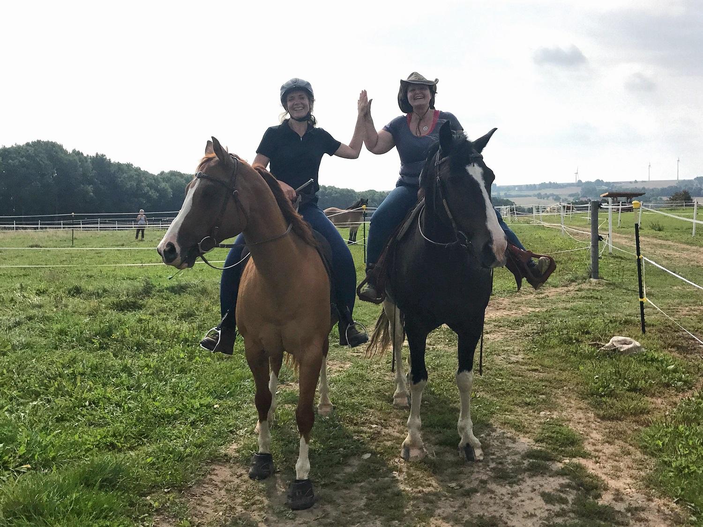 führungstraining mit pferden